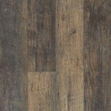 Shaw Floors Resilient Residential Tivoli Plus Avola 00534_0845V