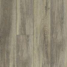 Shaw Floors Resilient Residential Tivoli Plus Delfino 00577_0845V
