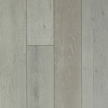 Shaw Floors Resilient Residential Messina HD Plus Nebbia Oak 05014_0850V