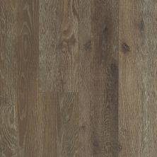 Shaw Floors Resilient Residential Messina HD Plus Baia Oak 07000_0850V