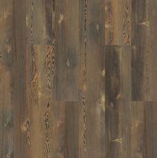 Shaw Floors Resilient Residential Blue Ridge Pine 720c HD Plus Earthy Pine 00623_0864V