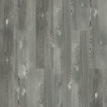 Shaw Floors Resilient Residential Blue Ridge Pine 720c HD Plus Longleaf Pine 05007_0864V