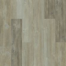 Shaw Floors Resilient Residential Salvaged Pine 00554_0865V
