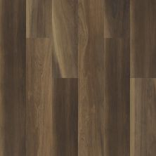 Shaw Floors Resilient Residential Cathedral Oak 720c Plus Ravine Oak 00798_0866V