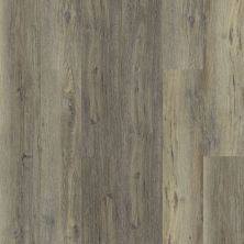 Shaw Floors Resilient Residential Heritage Oak 720c Plus Sandy Oak 05005_0867V