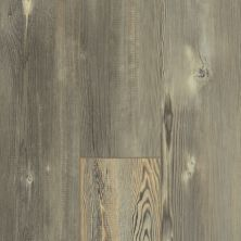 Shaw Floors Resilient Residential Blue Ridge Pine 720g Plus Pitch Pine 00167_0868V