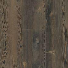 Shaw Floors Resilient Residential Blue Ridge Pine 720g Plus Harvest Pine 00797_0868V