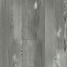 Shaw Floors Resilient Residential Blue Ridge Pine 720g Plus Longleaf Pine 05007_0868V