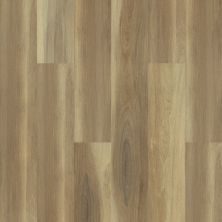 Shaw Floors Resilient Residential Cathedral Oak 720g Plus Shawshank Oak 00168_0870V