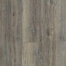 Shaw Floors Resilient Residential Heritage Oak 720g Plus Silver Oak 05003_0871V