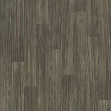 Shaw Floors Vinyl Residential Great Basin II Thebes 00531_0874V