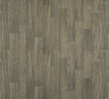Shaw Floors Vinyl Residential Great Basin II Conquest 00556_0874V
