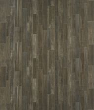 Shaw Floors Vinyl Residential Great Basin II Sparta 00565_0874V