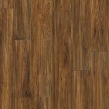 Shaw Floors Vinyl Residential Impact Burmese Teak 00604_0925V