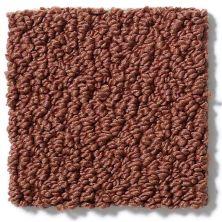 Shaw Floors SFA Danger Zone Canyon Clay 00601_0C009