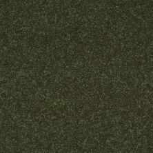 Shaw Floors SFA Enjoy The Moment III 12′ Aloe Vera 00303_0C015