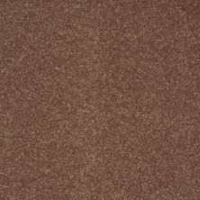 Shaw Floors SFA Enjoy The Moment III 12′ Toasted Marshmallow 00701_0C015