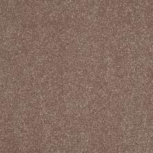 Shaw Floors SFA Enjoy The Moment III 12′ Deer Field 00703_0C015