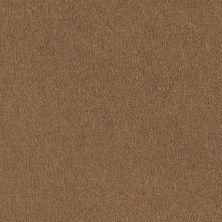 Shaw Floors SFA Born Better (s) Safari 00702_0C018