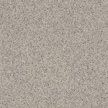 Shaw Floors SFA Everyday Easy Taupe Stone 00122_0C052