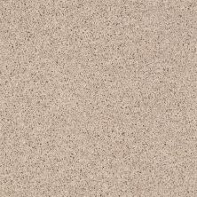 Shaw Floors SFA Everyday Easy Pebble 00123_0C052