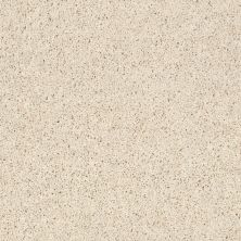 Shaw Floors SFA Everyday Easy Buff 33110_0C052