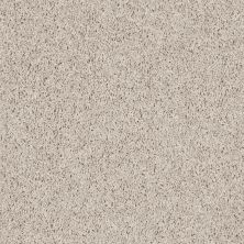 Shaw Floors SFA Everyday Easy Taupe Mist 33114_0C052