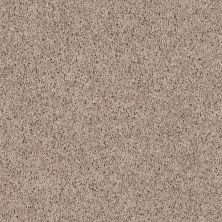 Shaw Floors SFA Everyday Easy Mushroom 33115_0C052