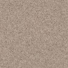 Shaw Floors SFA Everyday Easy Prairie Dust 33116_0C052