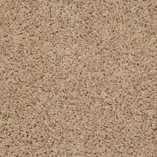Shaw Floors SFA Everyday Easy Star Bright 33210_0C052