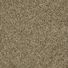 Shaw Floors SFA Everyday Easy Pear 33310_0C052