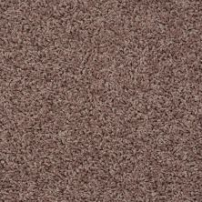 Shaw Floors SFA Everyday Easy Fawn 33714_0C052