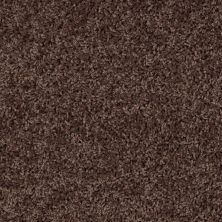 Shaw Floors SFA Everyday Easy Walnut 33715_0C052