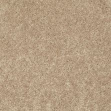 Shaw Floors SFA Topic Desire I Dried Hay 00202_0C100