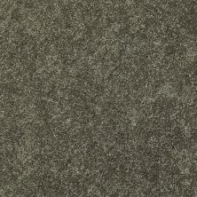 Shaw Floors SFA Topic Desire I Hill Top 00302_0C100