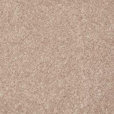 Shaw Floors SFA Topic Desire I Spice Wood 00700_0C100