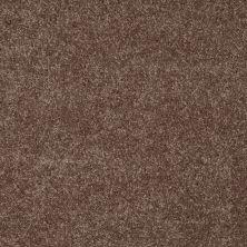 Shaw Floors SFA Topic Desire I Deer Track 00705_0C100
