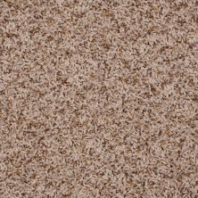 Shaw Floors SFA Sophisticated Space Bermuda Beige 34112_0C107