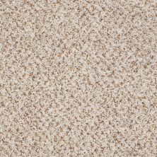 Shaw Floors SFA Sophisticated Space Snow Drift 34120_0C107