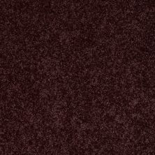 Shaw Floors SFA Take Part 15′ Royal Purple 00902_0C137