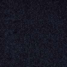 Shaw Floors SFA Enjoy The Moment III 15′ Dark Denim 00402_0C140