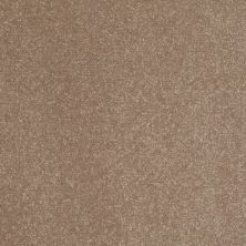 Shaw Floors SFA Enjoy The Moment III 15′ Riverbed 00702_0C140