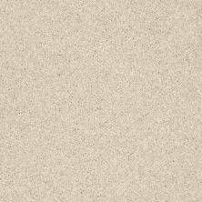 Shaw Floors SFA Vivid Colors I Barefoot Beige 00105_0C160