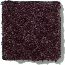 Shaw Floors SFA Vivid Colors I Grape Wine 00901_0C160