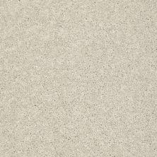 Shaw Floors SFA Vivid Colors II Hint Of Taupe 00103_0C161