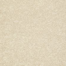 Shaw Floors SFA Vivid Colors II Biscuit 00104_0C161
