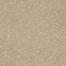 Shaw Floors SFA Vivid Colors II Natural Wood 00109_0C161