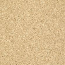 Shaw Floors SFA Vivid Colors II Sunshine 00204_0C161