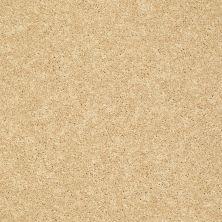 Shaw Floors SFA Vivid Colors II Sunshine 00204_0C161