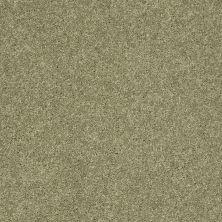 Shaw Floors SFA Vivid Colors II Sweet Grass 00300_0C161